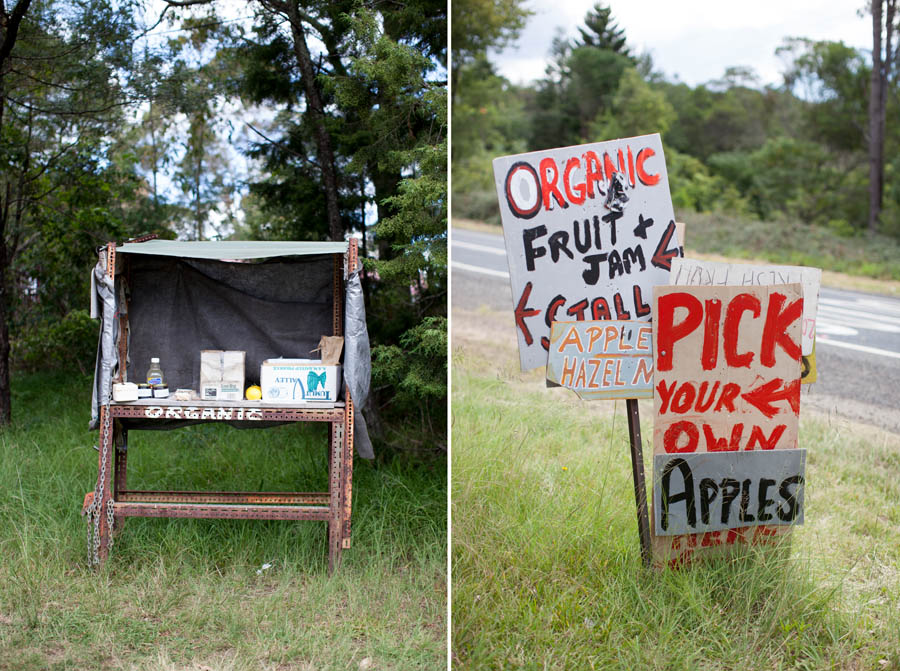 Apple Picking In The Blue Mountains  Veggiesandmecom Bilpin Springs Orchard Is A Great Place To Bring Your Family For Apple  Picking